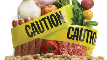 food safety and security in india environmental sciences essay Many technology and industry sectors: information technology, homeland  security, medicine, transportation, energy, food safety, and environmental  science,.